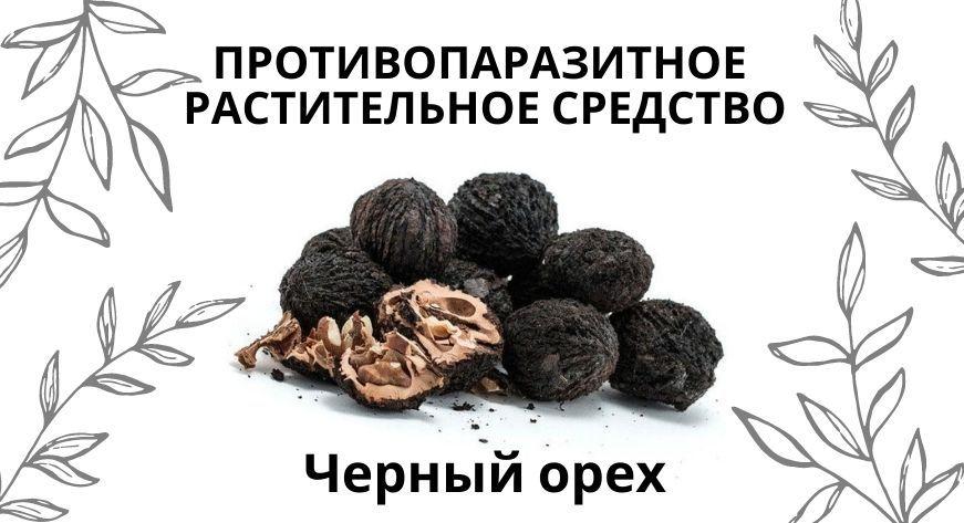 Чёрный орех против паразитов